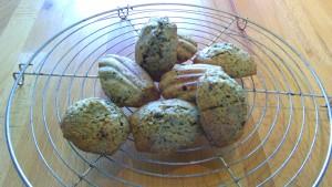 ortie choco madeleine